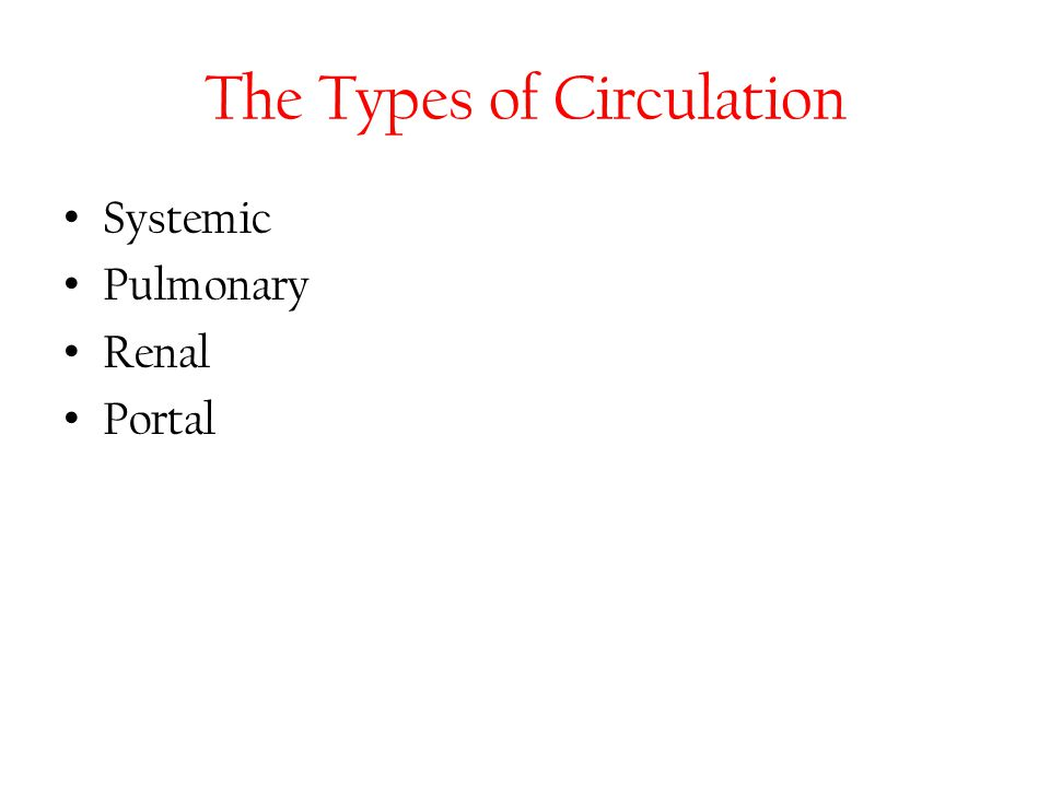 The Types of Circulation Systemic Pulmonary Renal Portal