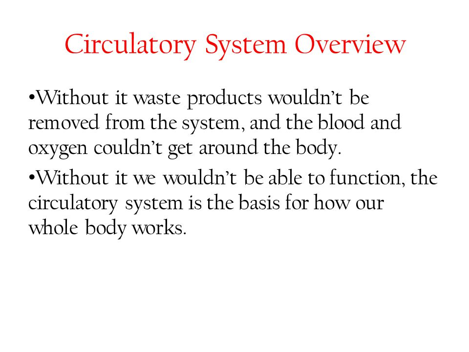 Circulatory System Overview Without it waste products wouldn't be removed from the system, and the blood and oxygen couldn't get around the body. With