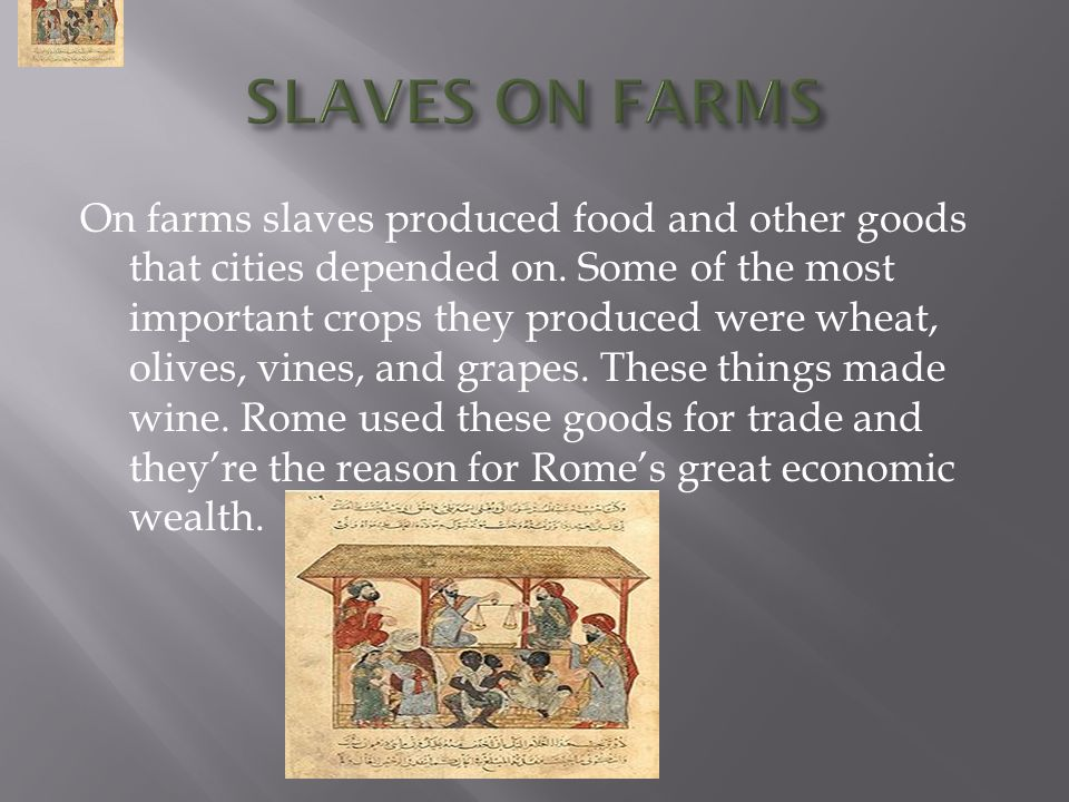 On farms slaves produced food and other goods that cities depended on.
