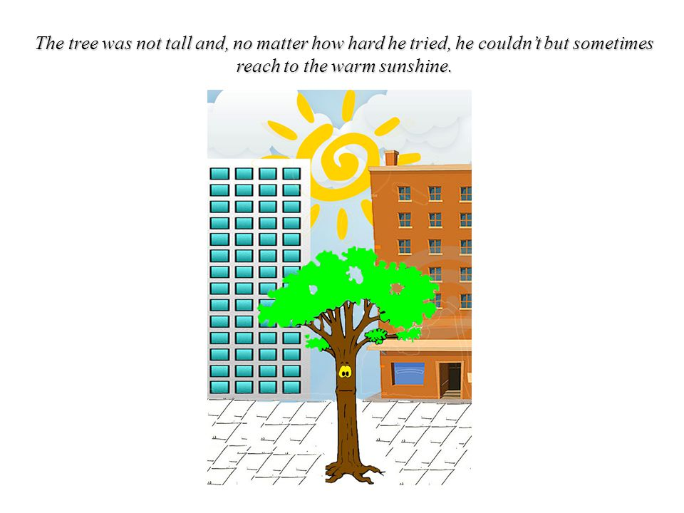 The tree was not tall and, no matter how hard he tried, he couldn't but sometimes reach to the warm sunshine.