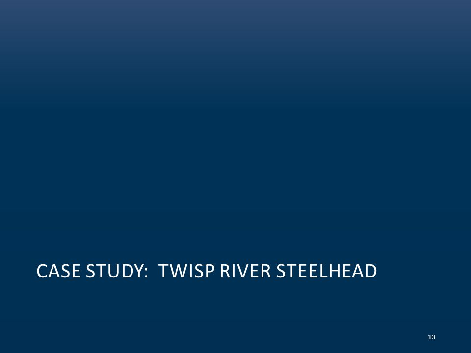 CASE STUDY: TWISP RIVER STEELHEAD 13