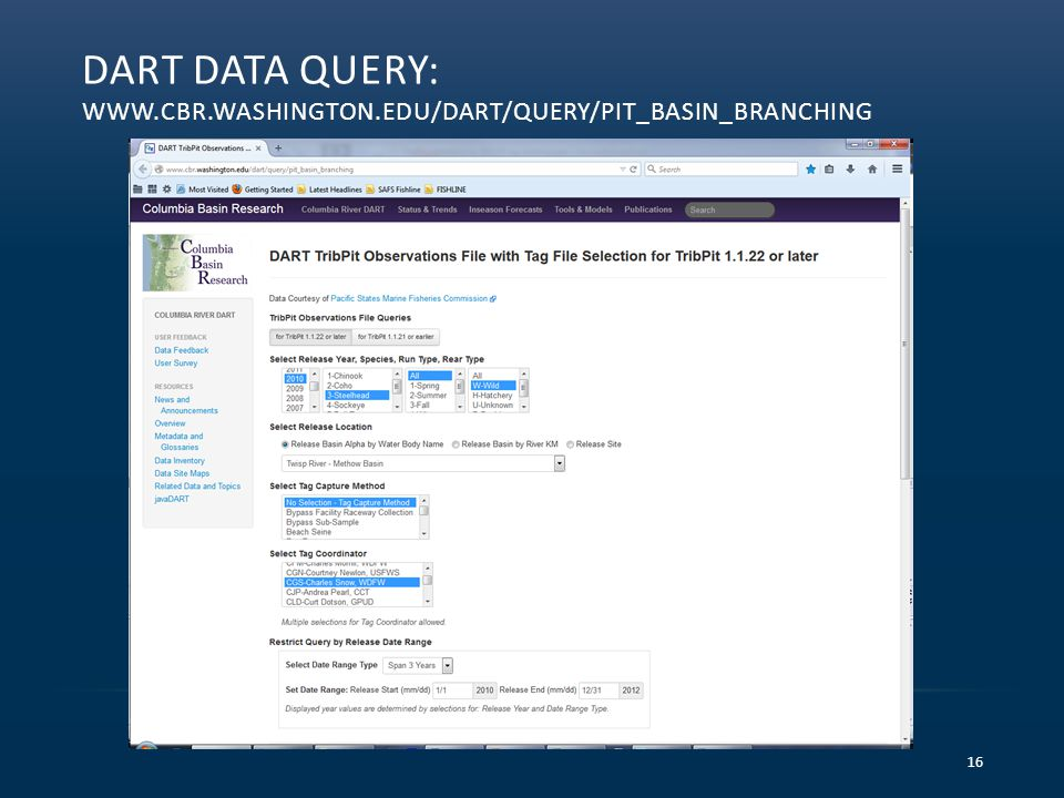 DART DATA QUERY: WWW.CBR.WASHINGTON.EDU/DART/QUERY/PIT_BASIN_BRANCHING 16
