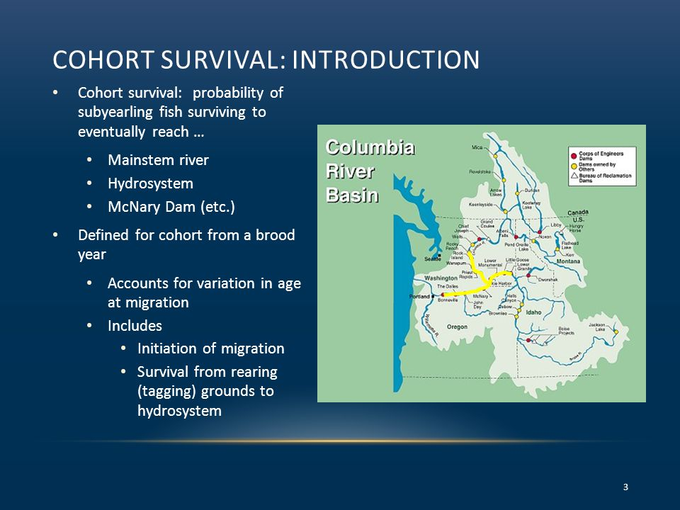 COHORT SURVIVAL: INTRODUCTION Cohort survival: probability of subyearling fish surviving to eventually reach … Mainstem river Hydrosystem McNary Dam (