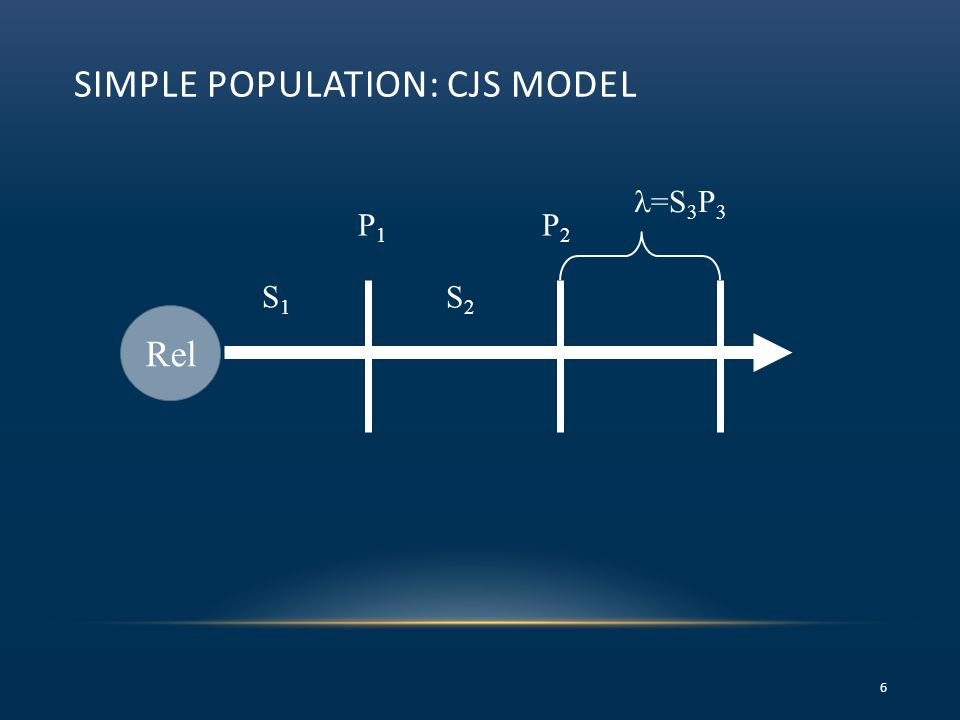 SIMPLE POPULATION: CJS MODEL 6 Rel S1S1 P1P1 =S 3 P 3 S2S2 P2P2
