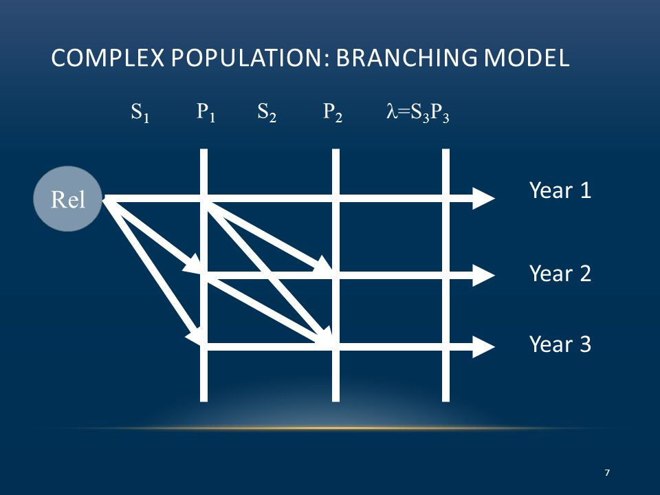 COMPLEX POPULATION: BRANCHING MODEL 7 Rel S1S1 P1P1 =S 3 P 3 S2S2 P2P2 Year 1 Year 2 Year 3