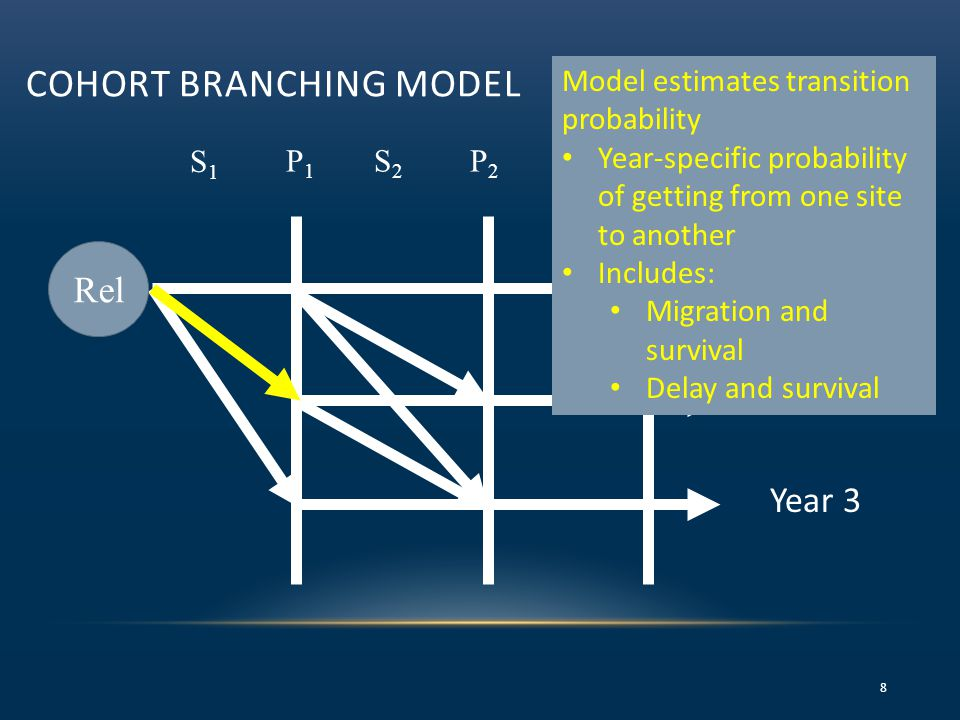 COHORT BRANCHING MODEL 8 S1S1 P1P1 =S 3 P 3 S2S2 P2P2 Year 1 Year 2 Year 3 Model estimates transition probability Year-specific probability of getting