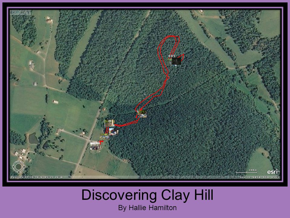 Discovering Clay Hill By Hallie Hamilton