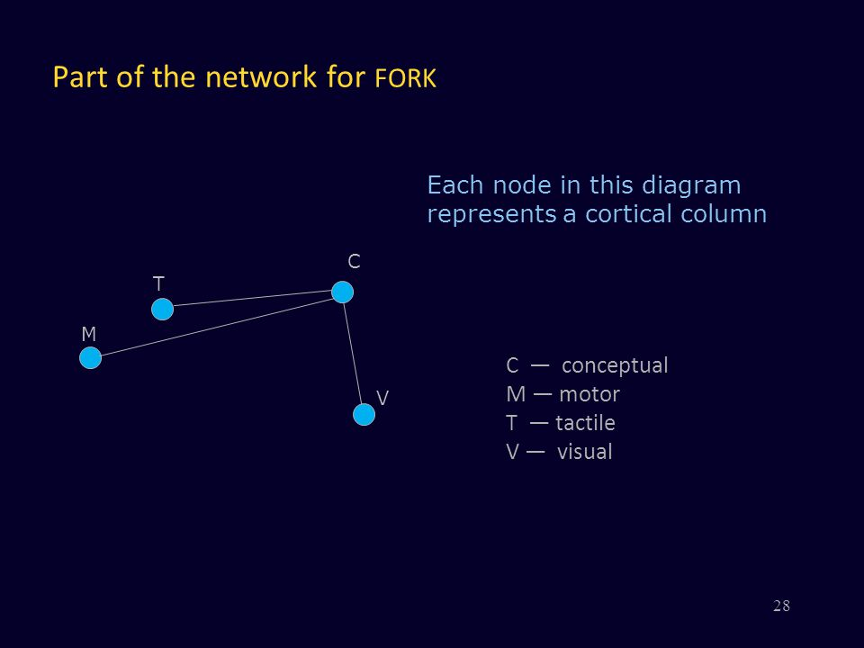 Part of the network for FORK V C Each node in this diagram represents a cortical column M T 28 C — conceptual M — motor T — tactile V — visual