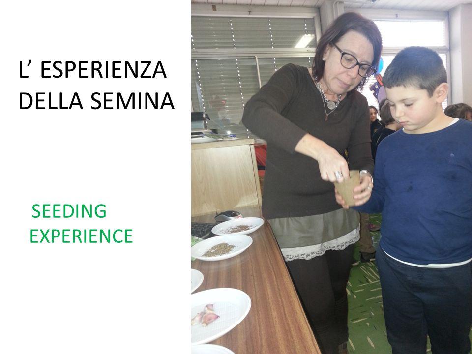 L' ESPERIENZA DELLA SEMINA SEEDING EXPERIENCE