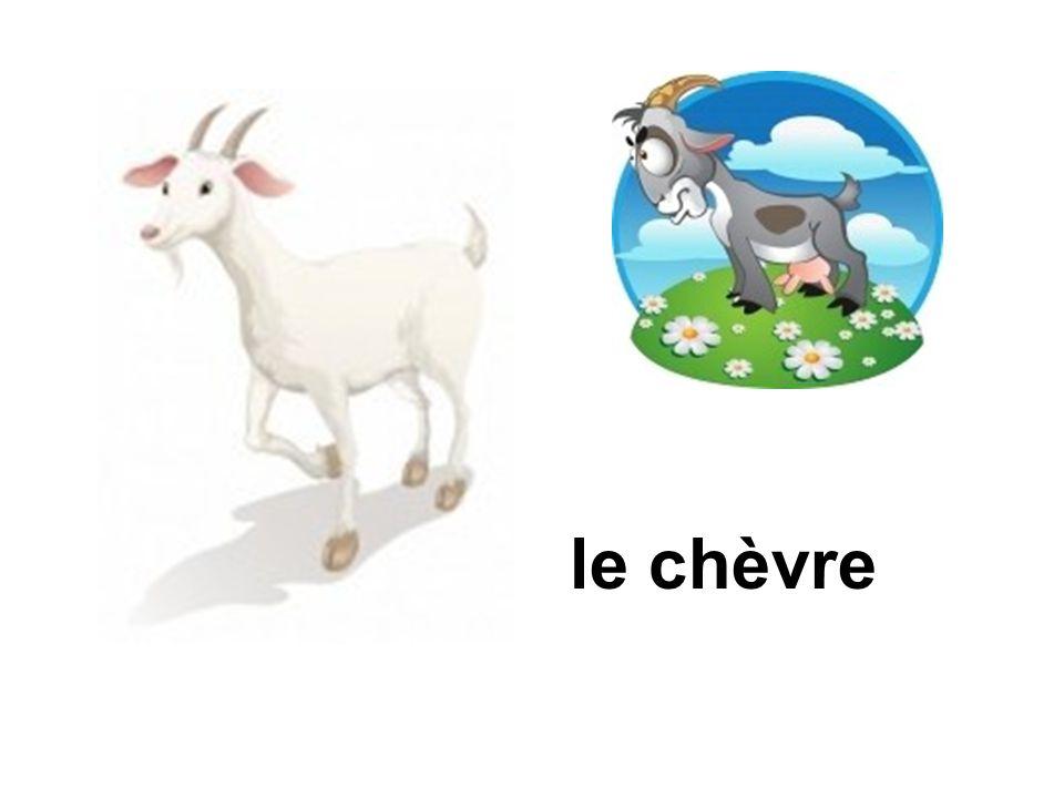 le chèvre