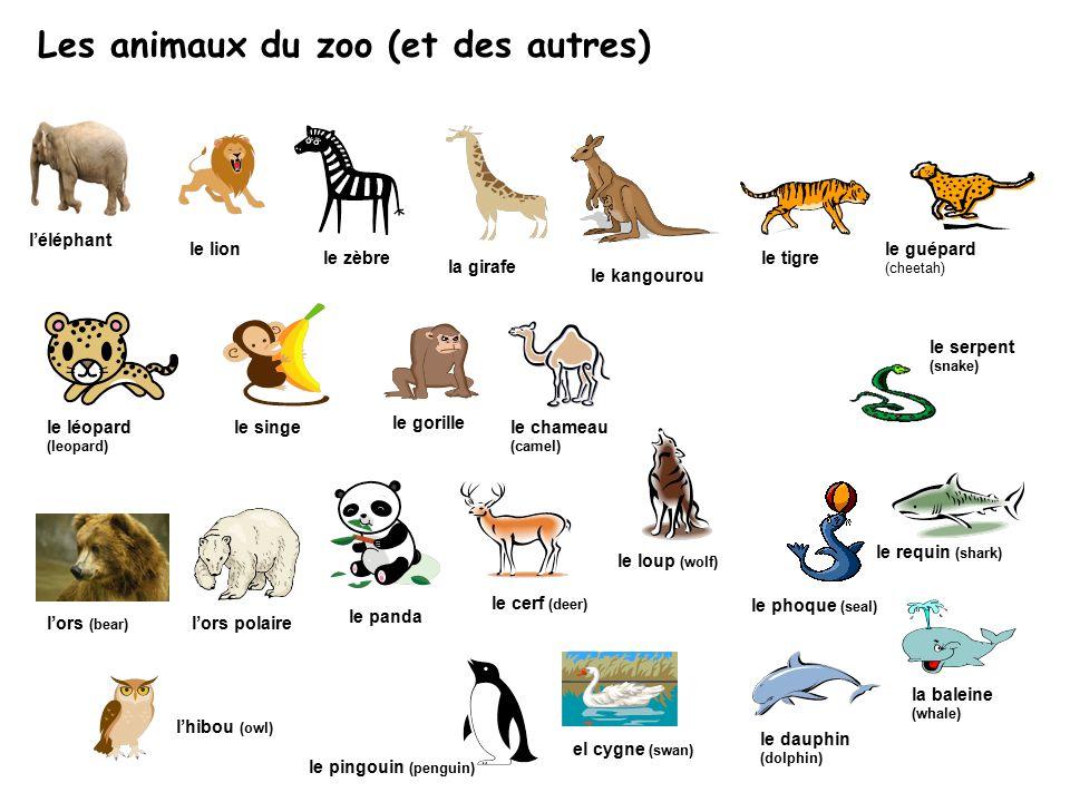 Les animaux du zoo (et des autres) le guépard (cheetah) l'éléphant le lion le zèbre la girafe le tigre le léopard (leopard) le singe le gorille l'ors (bear) l'ors polaire le panda le chameau (camel) le requin (shark) la baleine (whale) le dauphin (dolphin) el cygne (swan) l'hibou (owl) le serpent (snake) le kangourou le phoque (seal) le cerf (deer) le pingouin (penguin) le loup (wolf)