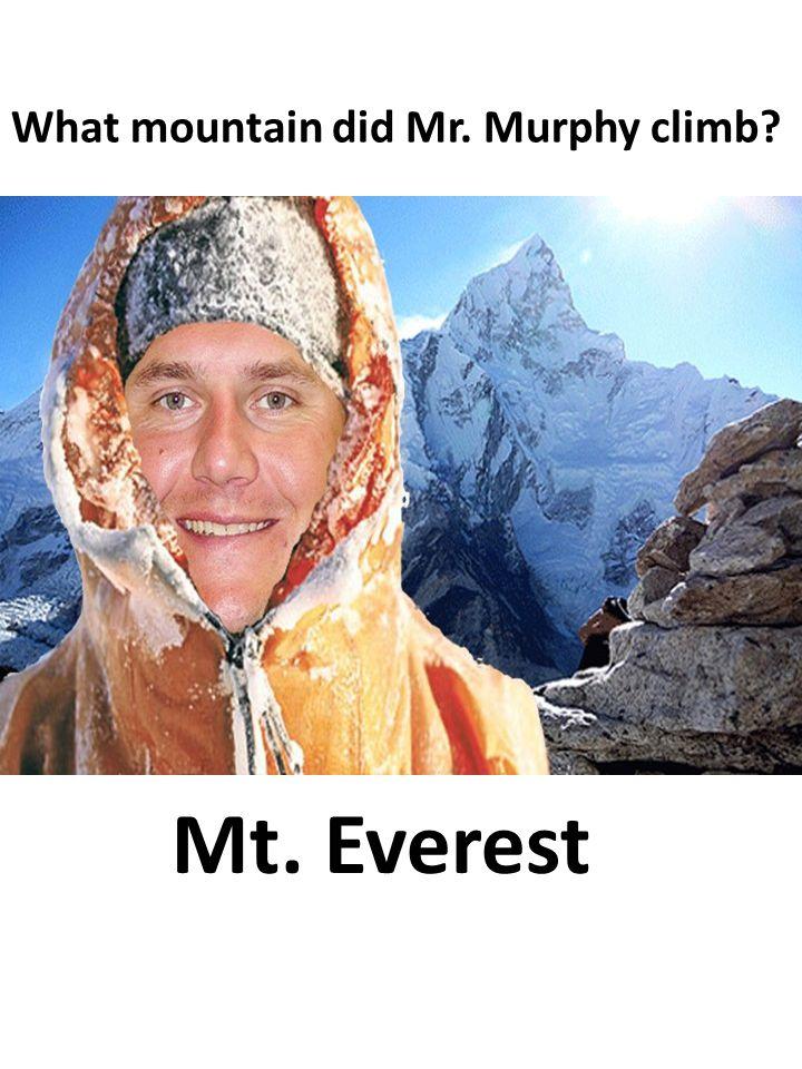 Mr. Murphy rode a _____________!! camel