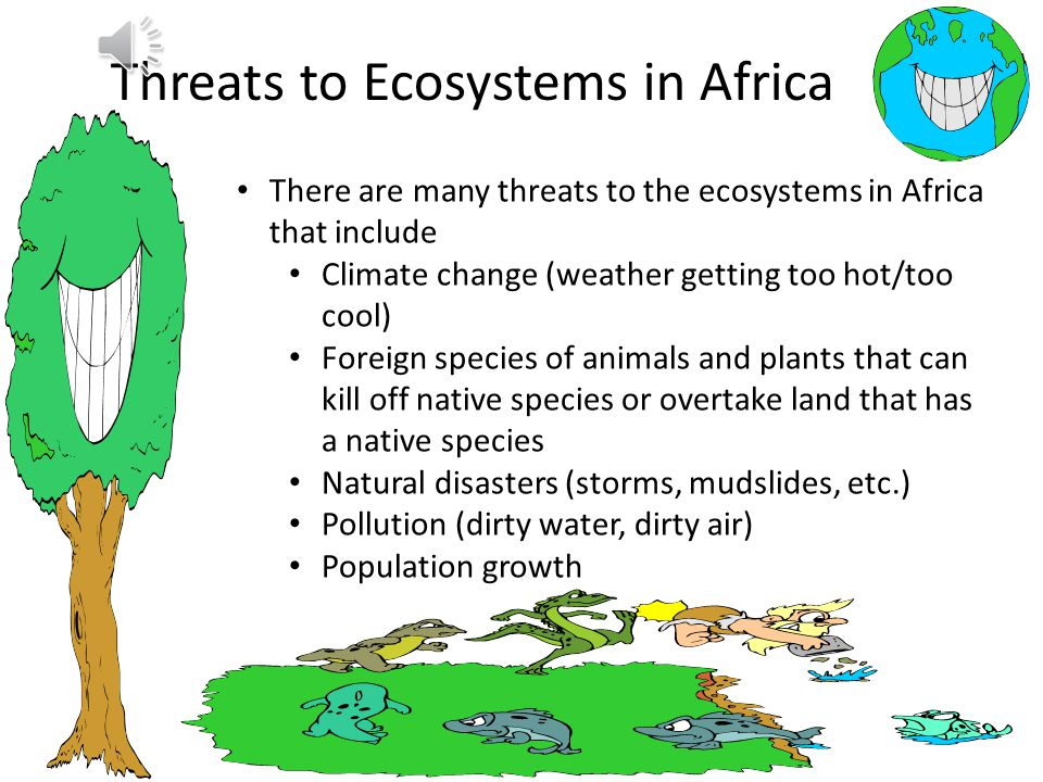 Types of Ecosystems in Africa Deserts-dry hot, very few plants Rainforests-very rainy, many animals, plants, and trees.