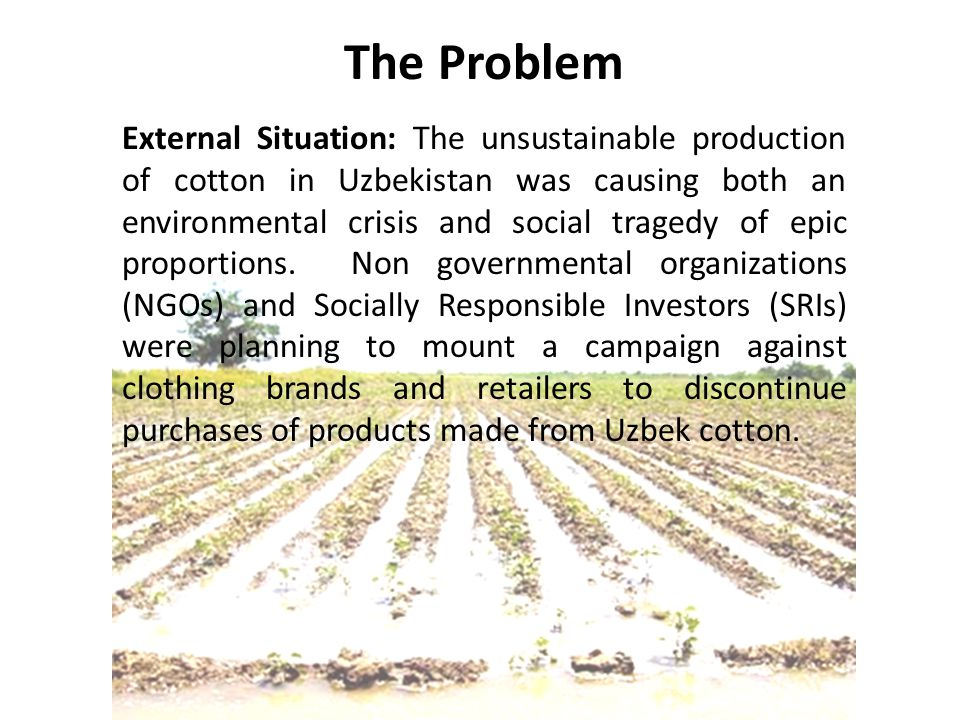 External Situation: The unsustainable production of cotton in Uzbekistan was causing both an environmental crisis and social tragedy of epic proportions.