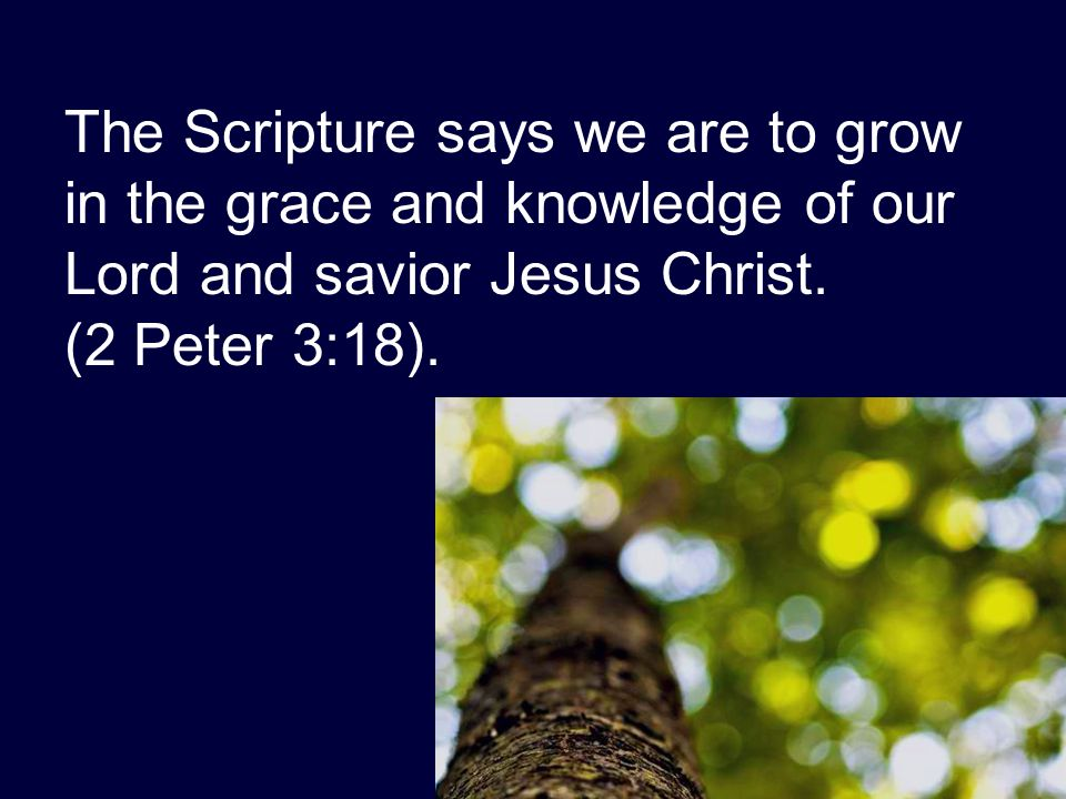The Scripture says we are to grow in the grace and knowledge of our Lord and savior Jesus Christ. (2 Peter 3:18).