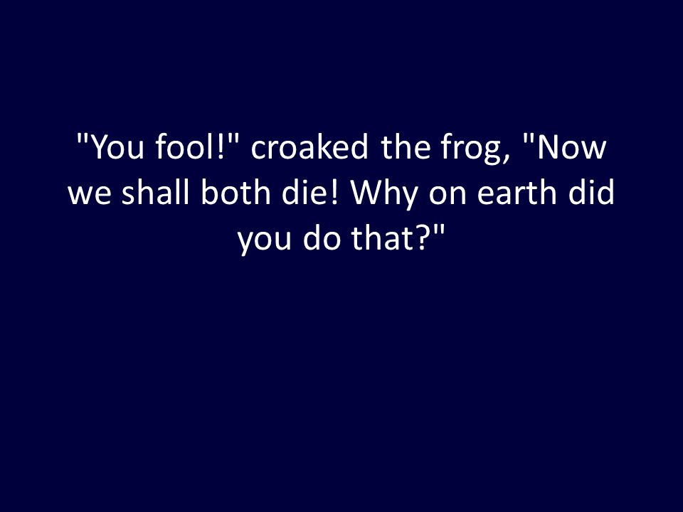 You fool! croaked the frog, Now we shall both die! Why on earth did you do that