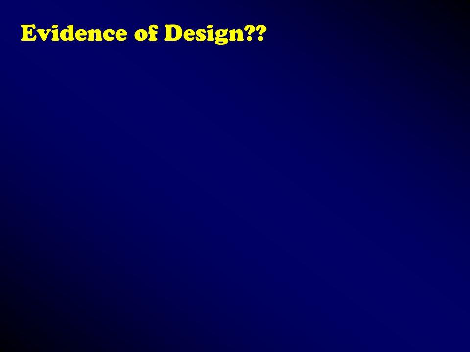 Evidence of Design??