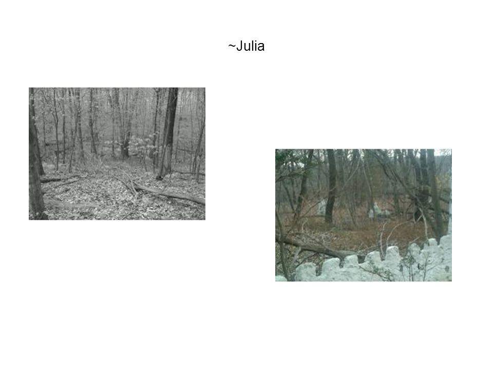 ~Julia