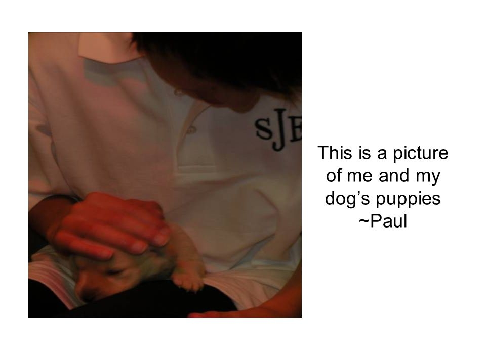 This is a picture of me and my dog's puppies ~Paul