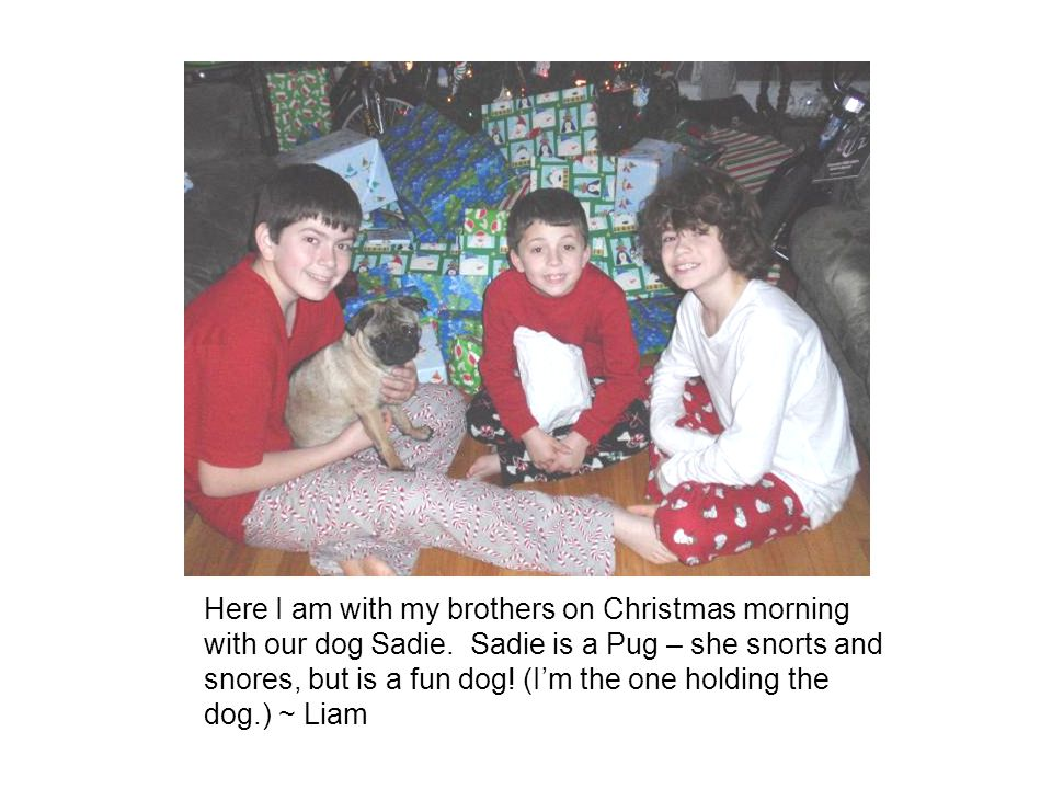 Here I am with my brothers on Christmas morning with our dog Sadie.