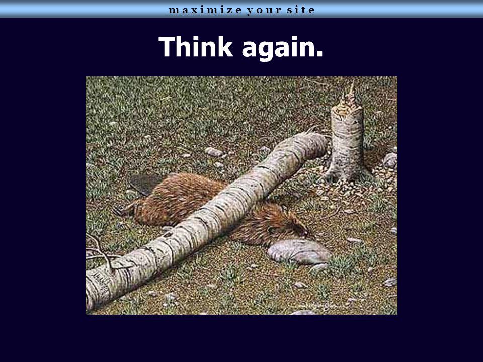 Think again. m a x i m i z e y o u r s i t e