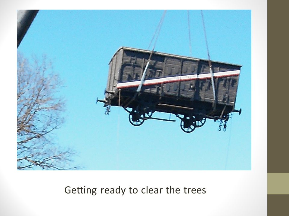 Getting ready to clear the trees