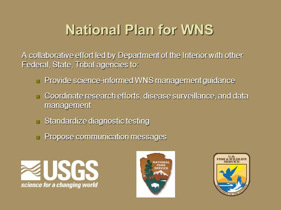 National Plan for WNS A collaborative effort led by Department of the Interior with other Federal, State, Tribal agencies to: Provide science-informed WNS management guidance Provide science-informed WNS management guidance Coordinate research efforts, disease surveillance, and data management Coordinate research efforts, disease surveillance, and data management Standardize diagnostic testing Standardize diagnostic testing Propose communication messages Propose communication messages