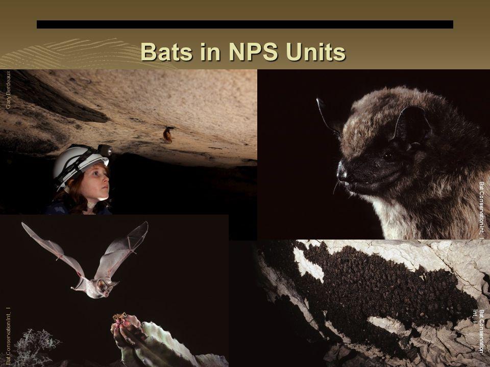 E X P E R I E N C E Y O U R A M E R I C A Bats in NPS Units Gary Berdeaux Bat Conservation Int ' l
