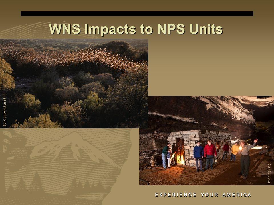E X P E R I E N C E Y O U R A M E R I C A WNS Impacts to NPS Units Gary Berdeaux Bat Conservation Int ' l