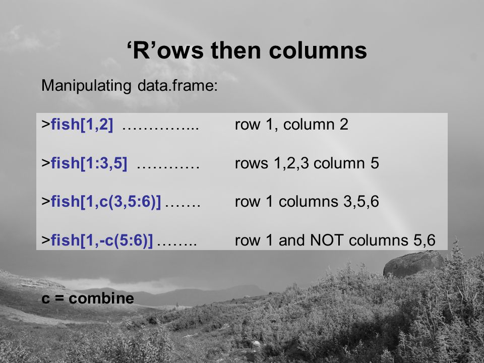 'R'ows then columns Manipulating data.frame: >fish[1,2] …………...row 1, column 2 >fish[1:3,5] …………rows 1,2,3 column 5 >fish[1,c(3,5:6)] …….row 1 columns 3,5,6 >fish[1,-c(5:6)] ……..