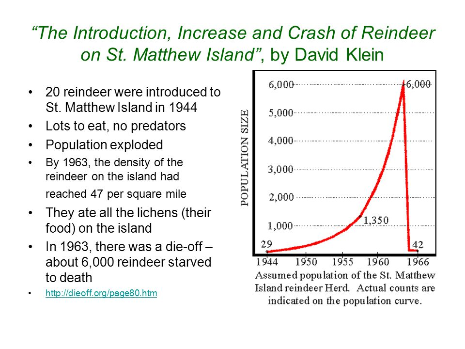 """""""The Introduction, Increase and Crash of Reindeer on St. Matthew Island"""", by David Klein 20 reindeer were introduced to St. Matthew Island in 1944 Lot"""