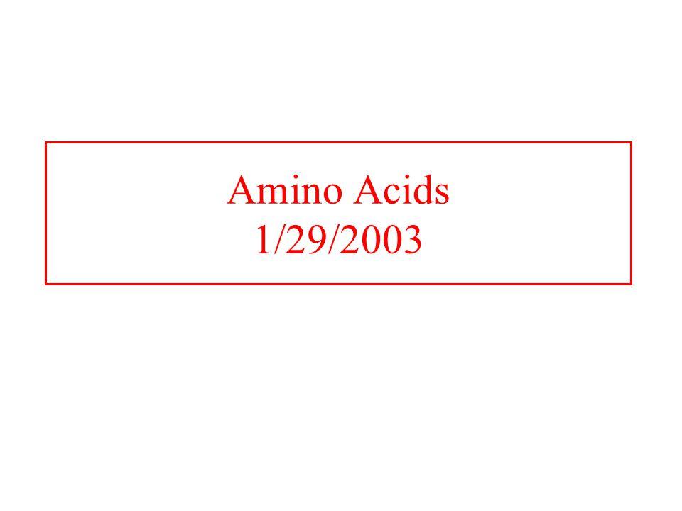 Amino Acids 1/29/2003