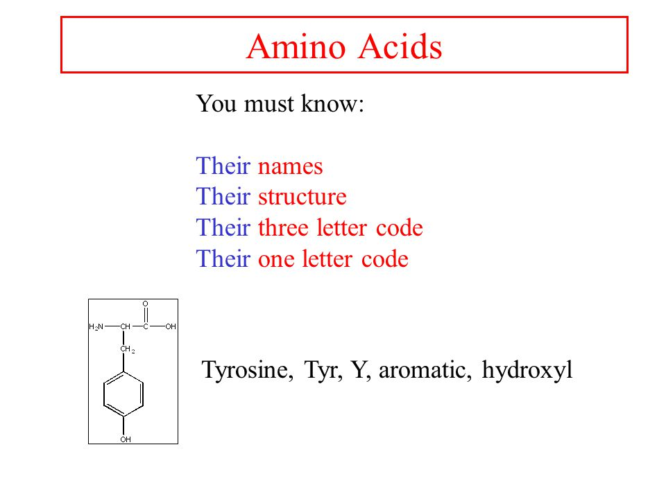 Amino Acids You must know: Their names Their structure Their three letter code Their one letter code Tyrosine, Tyr, Y, aromatic, hydroxyl