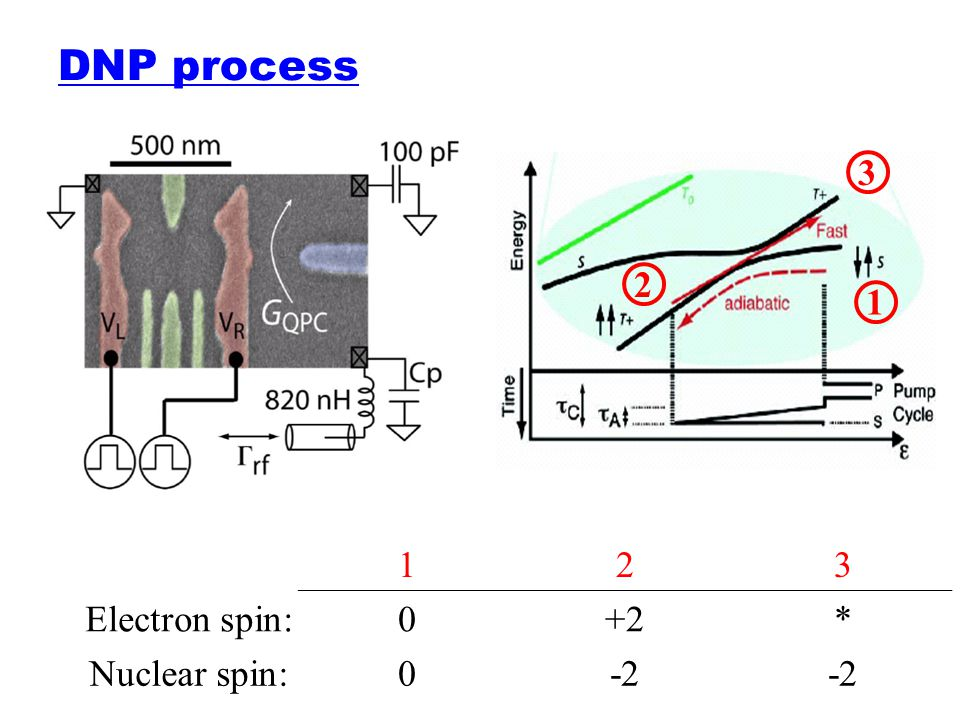 DNP process 1 2 3 123 Electron spin:0+2* Nuclear spin:0-2