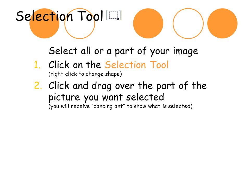 Selection Tool Select all or a part of your image 1.Click on the Selection Tool (right click to change shape) 2.Click and drag over the part of the picture you want selected (you will receive dancing ant to show what is selected)