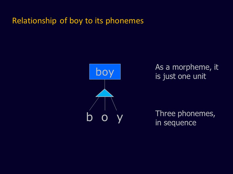Relationship of boy to its phonemes boy As a morpheme, it is just one unit Three phonemes, in sequence b o y