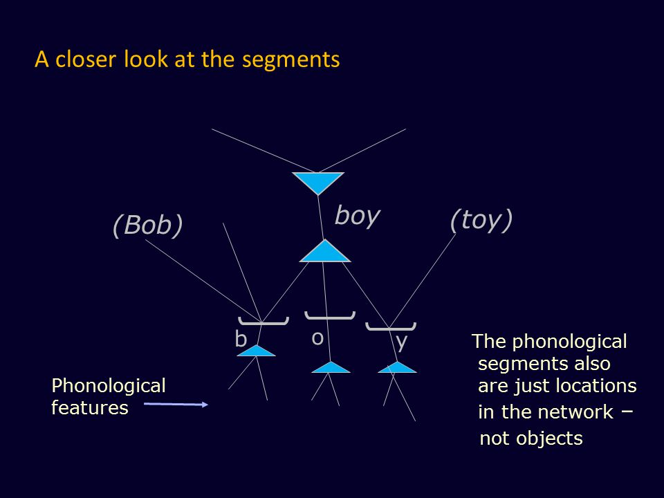 A closer look at the segments b boy y Phonological features o The phonological segments also are just locations in the network – not objects (Bob) (to