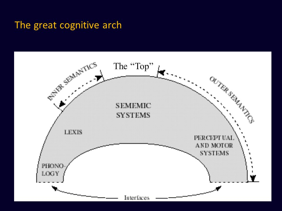 """The great cognitive arch The """"Top"""""""