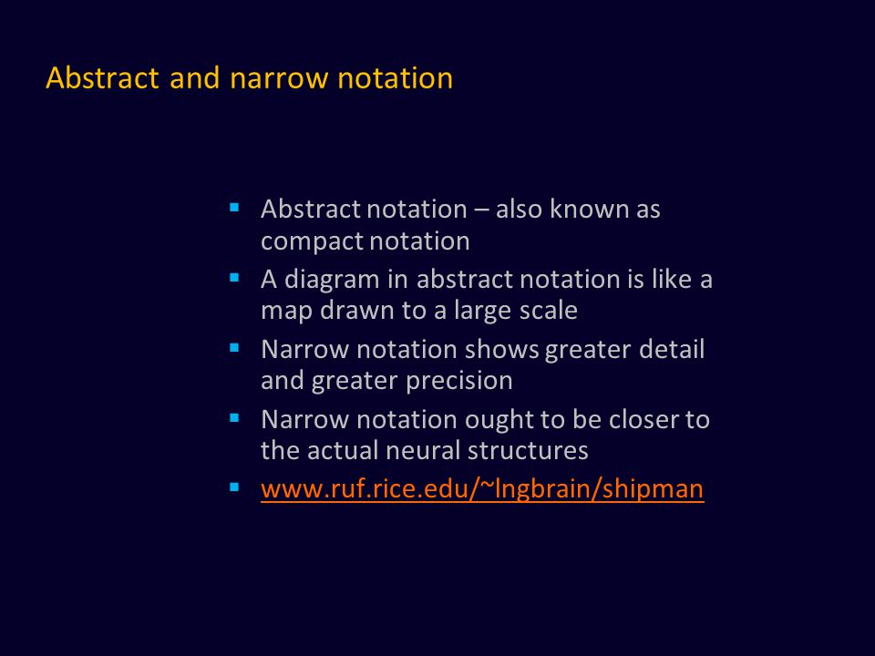 Abstract and narrow notation  Abstract notation – also known as compact notation  A diagram in abstract notation is like a map drawn to a large scale  Narrow notation shows greater detail and greater precision  Narrow notation ought to be closer to the actual neural structures  www.ruf.rice.edu/~lngbrain/shipman www.ruf.rice.edu/~lngbrain/shipman