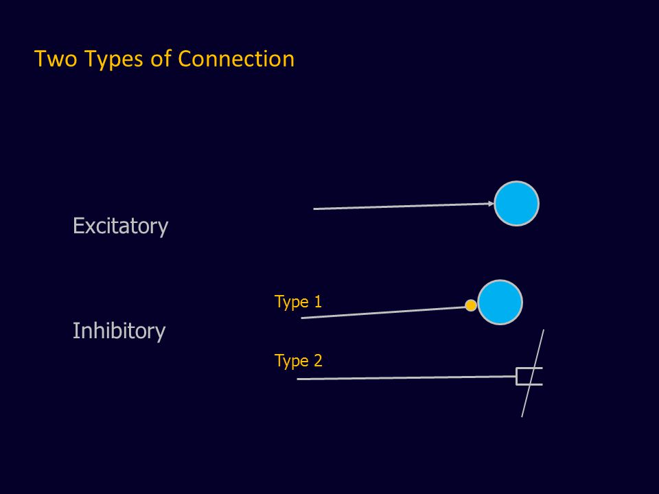 Two Types of Connection Excitatory Inhibitory Type 1 Type 2