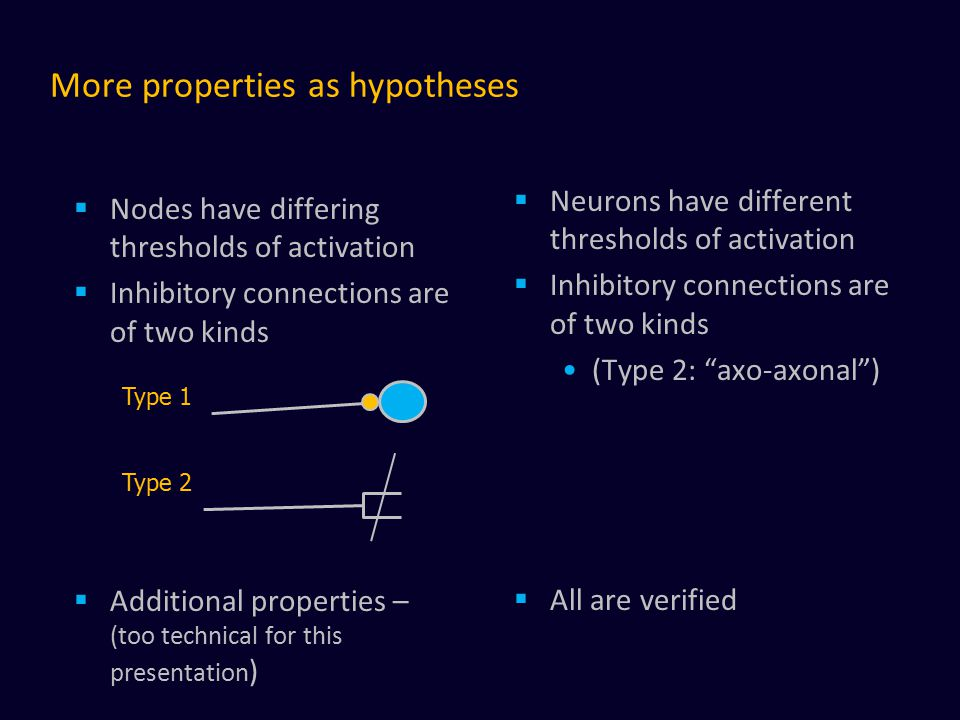 More properties as hypotheses  Nodes have differing thresholds of activation  Inhibitory connections are of two kinds  Additional properties – (too technical for this presentation )  Neurons have different thresholds of activation  Inhibitory connections are of two kinds (Type 2: axo-axonal )  All are verified Type 1 Type 2
