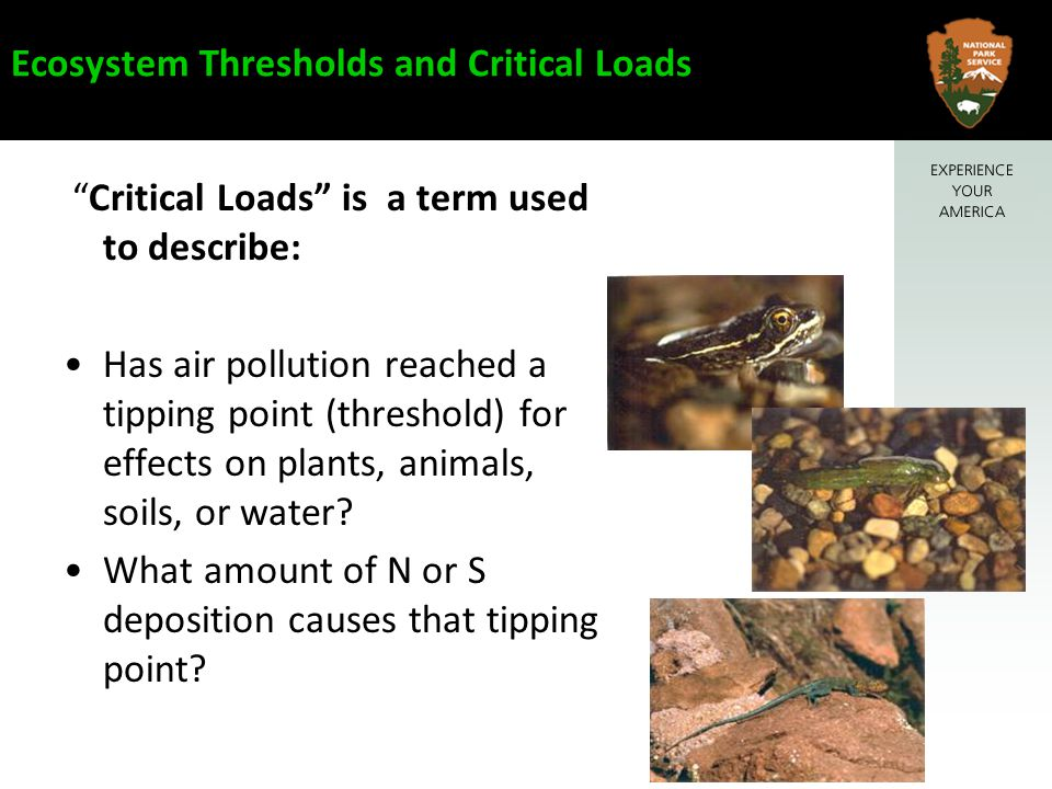 Ecosystem Thresholds and Critical Loads Critical Loads is a term used to describe: Has air pollution reached a tipping point (threshold) for effects on plants, animals, soils, or water.