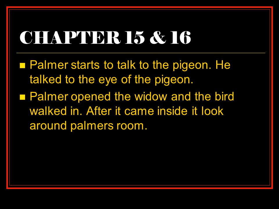 CHAPTER 15 & 16 Palmer starts to talk to the pigeon.