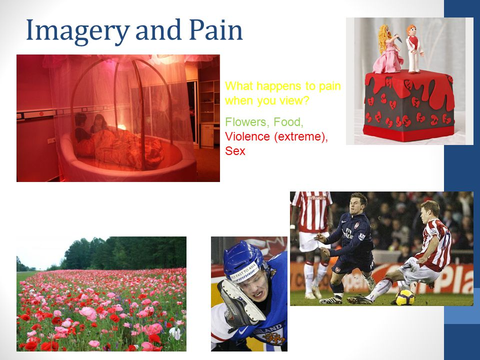 Imagery and Pain What happens to pain when you view Flowers, Food, Violence (extreme), Sex