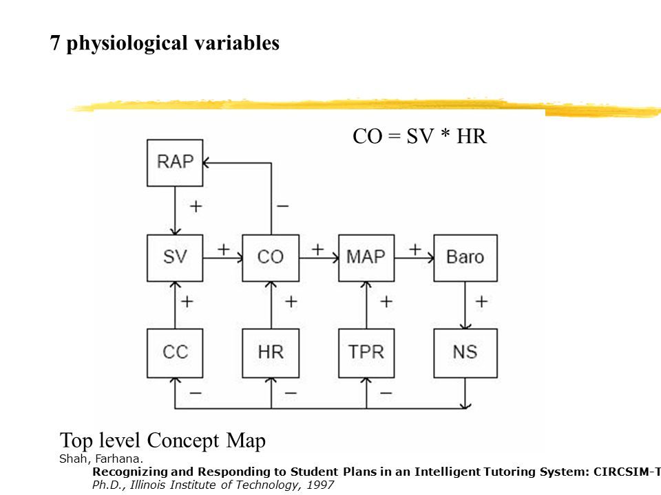 7 physiological variables Top level Concept Map Shah, Farhana.