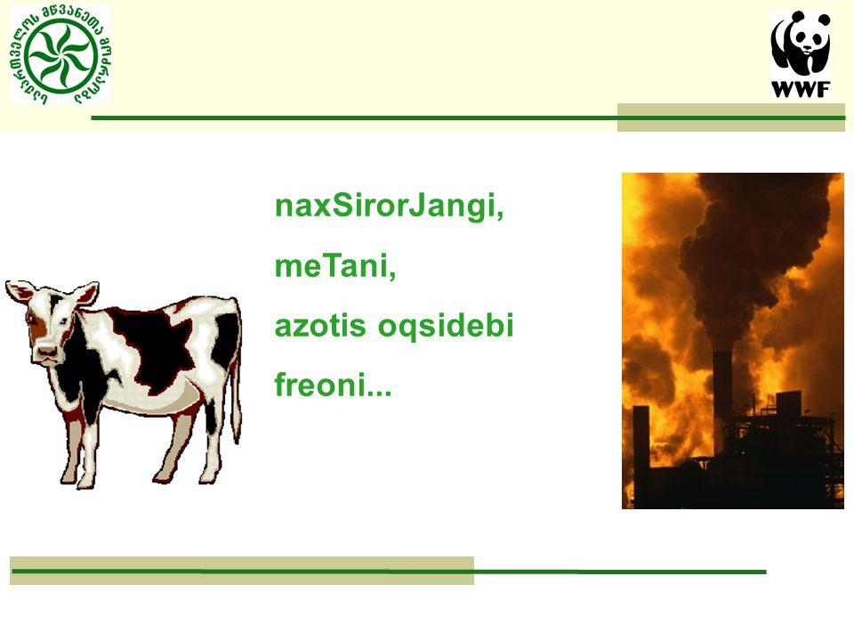 naxSirorJangi, meTani, azotis oqsidebi freoni...