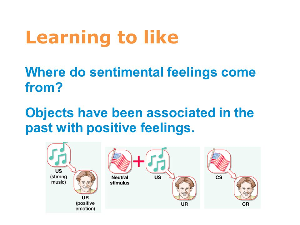 Learning to like 7 Where do sentimental feelings come from? Objects have been associated in the past with positive feelings.