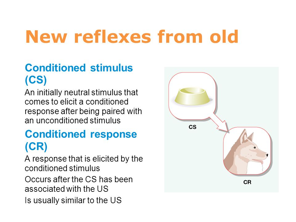 New reflexes from old Conditioned stimulus (CS) An initially neutral stimulus that comes to elicit a conditioned response after being paired with an u