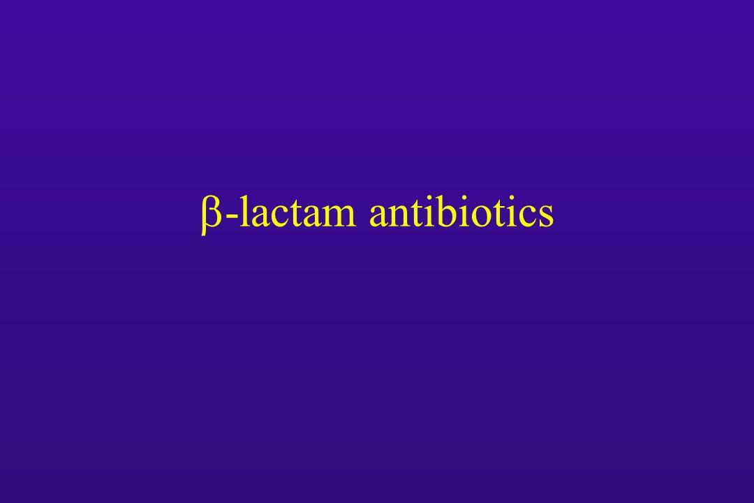  -lactam antibiotics