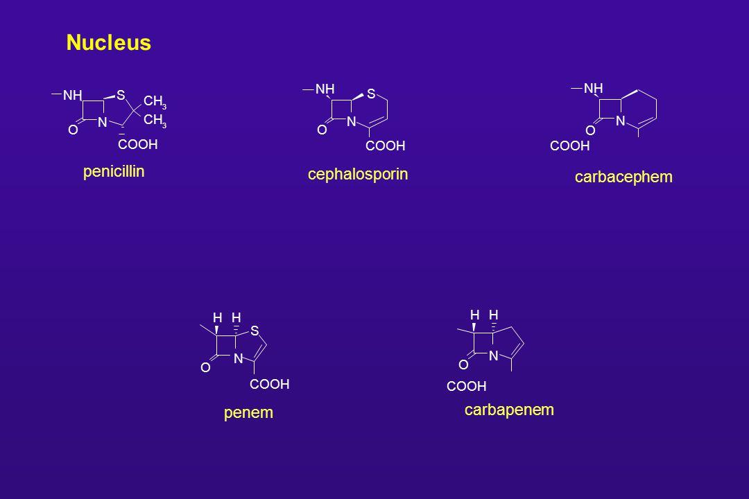 Nucleus COOH penem N S O HH COOH carbapenem N O HH SNH penicillin N O COOH CH 3 3 COOH carbacephem N NH O COOH cephalosporin N NH S O
